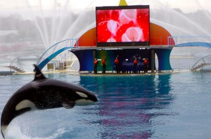 marineland-antibes
