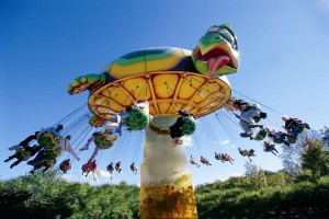 ok-corral-new-2016-flying-turtle-2