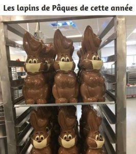chocolats de paques lapins avec masque anti coronavirus humour blague marrante confinement