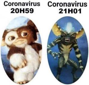 Le coronavirus devient gremlins : balgue de confinement