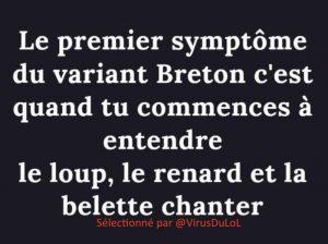 Premier symptôme du variant breton : quand tu commences à entendre le loup, le renard et la belette chanter …